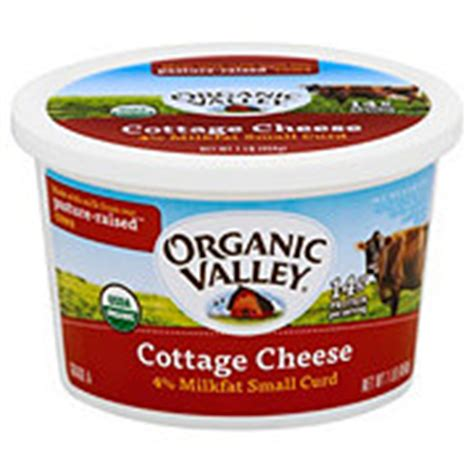 organic cottage cheese organic valley organic cottage cheese small curd shop