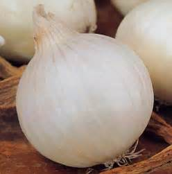 White Onion Varieties