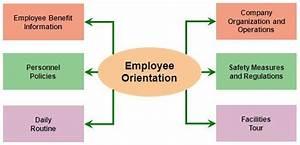 Purpose Of Employee Orientation Manual