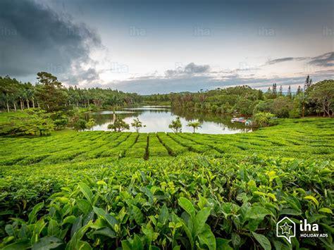 chambre d hote ile maurice flic en flac location bungalow île maurice pour vos vacances avec iha