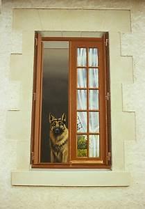 Trompe L Oeil Fenetre Exterieur : animaux trompe l 39 oeil fenetre et chien ~ Melissatoandfro.com Idées de Décoration