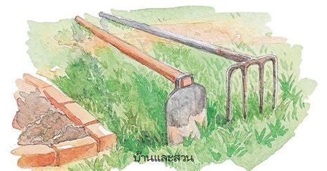จัดสวนเอง หน้าบ้านทาวน์เฮ้าส์ พร้อมพรรณไม้ปลูกในกระถาง ...