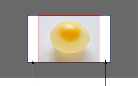 Css Scale Background Image Html Css Background Image To Fit Width Height Should