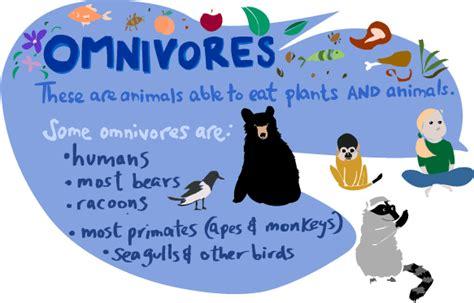 estudiando  ellos unit  animals  classification