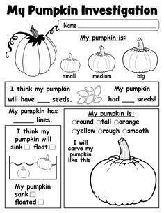 pumpkin investigation worksheet printable kindergarten