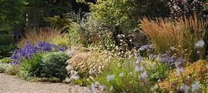 Allium Pflanzen Im Frühjahr : storchschnabel und andere stauden gr ser und ihre verwendung 3 3 the beth chatto gardens ~ Yasmunasinghe.com Haus und Dekorationen