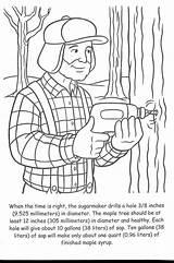 Maple Syrup Coloring Leaf Printable Sugar Crafts Bush Dentistmitcham sketch template