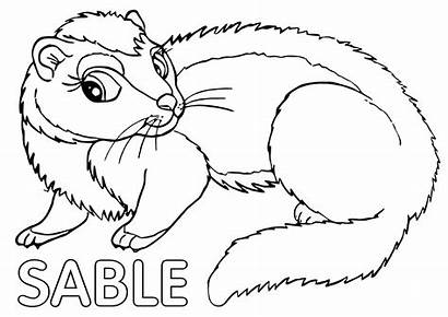 Sable Coloring Pages