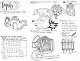 Biomolecules Coloring Amoeba Sisters Worksheet Lipids Sheet Biology Prerequisites Nursing Lessons Teaching Sheets Teacherspayteachers sketch template