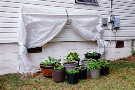 awesome ways   pvc pipe youd   thought