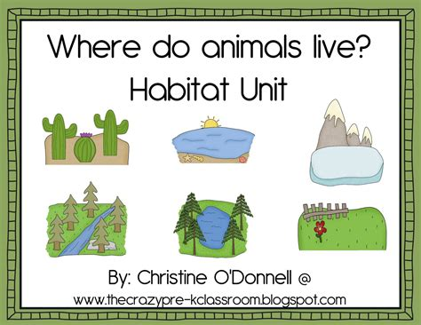 the pre k classroom animal and habitat teaching
