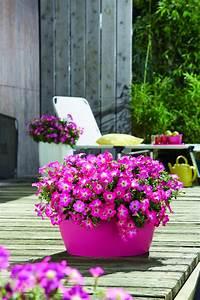 Welche Pflanzen Für Balkon : sonniger balkon pflanzen die sch nsten einrichtungsideen ~ Michelbontemps.com Haus und Dekorationen