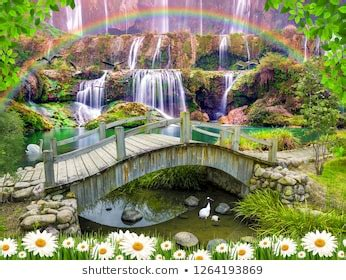 waterfall  colorful plants images stock