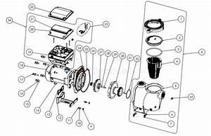 Intelliflo I1   I2 Variable Speed Pump After April 2016