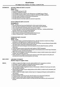 cyber security analyst resume samples velvet jobs With cyber security sample resume