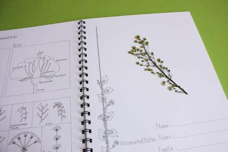 Herbarium deckblatt pdf zum ausdrucken ein herbarium deckblatt bzw eineherbarium vorlage zum ausdruckenist wenn zeit knapp wird anlage eines herbariums teil von herbarium vorlage blatt. Herbarium Deckblatt Vorlage Zum Ausdrucken