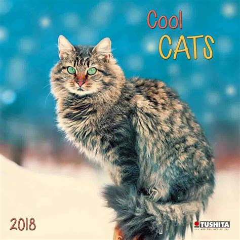 cool cats calendars ukpostersabposterscom