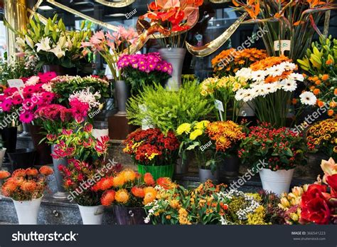 Beck S Flower Shop Gardens flower shop colourful flowers stock photo 366541223