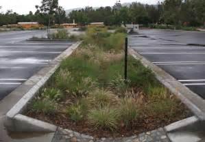 Parking Lot Bioswale Design