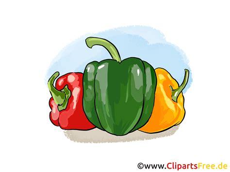 www clipart paprika illustration bild clipart