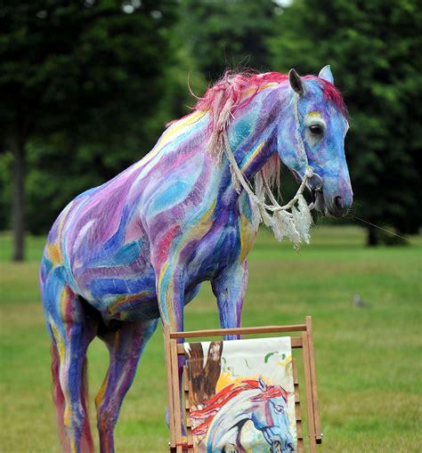 decorate  horse   parade  costume class