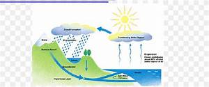 Water Cycle Fifth Grade Condensation Process  Png