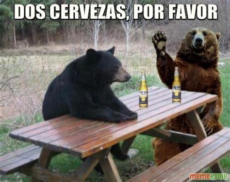 Patient Bear Meme - patient bear loves to socialize patient bear bear sitting at table know your meme