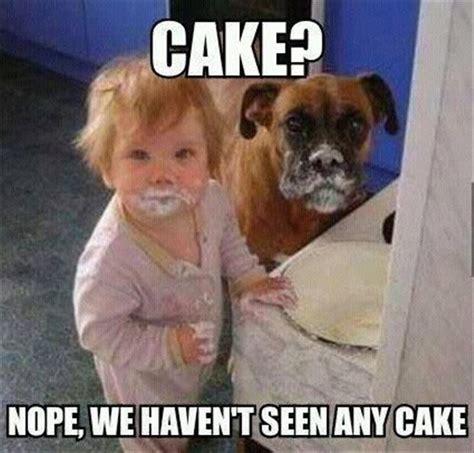 Baby Cake Meme - funny baby eating cake