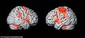 Brain function improves for DAYS after reading a novel ...