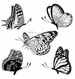 24 best Doodle Butterfly Outline Tattoos images on ...