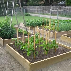 Veggie Garden Planning Tips - Vegetable Gardener
