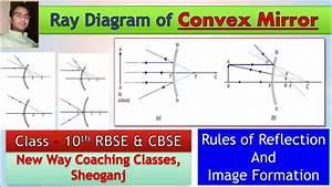 Ray Diagram Convex Mirror L Class 10 Cbse  U0026 Rbse L Chapter