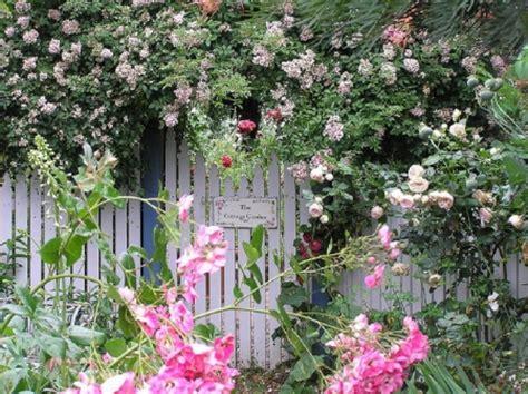 English Cottage Garden  Flowers & Nature Background