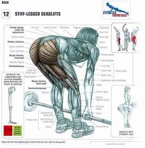Straight Leg Dead Lift