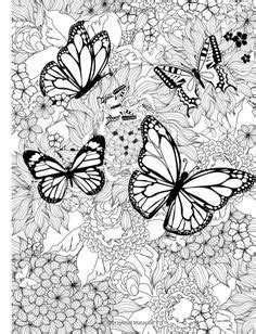 377 Best Butterflies images in 2020 | Coloring pages