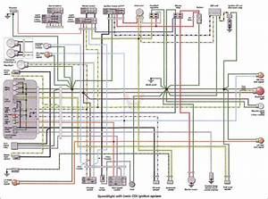 Sum Up Wiring Diagram Torzone Org Peugeot Ludix  Peugeot