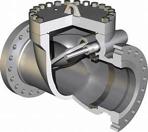 Swing Check Valve And Lift Check Valve