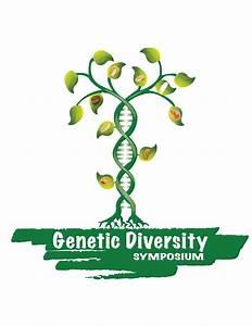 Graduate Students At Cimmyt Organize Genetic Diversity