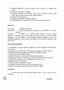 hadoop resume With mainframe to hadoop migration resume