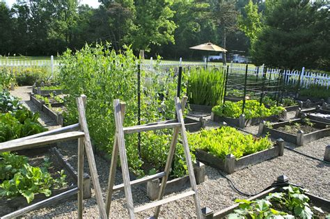 How To Plan A Vegetable Garden That Will Flourish  Hort Zone