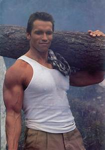 Arnold Schwarzenegger Wallpaper HD Download