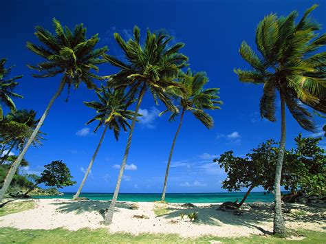 World Amazing Famous Beaches Wallpapers Download