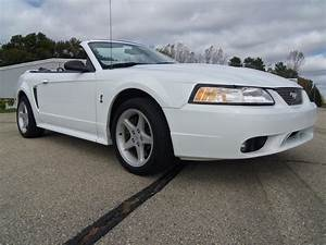 1999 Ford Mustang SVT Cobra for Sale | ClassicCars.com | CC-1152663