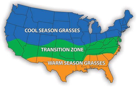 grass grasses georgia season warm cool map types lawns vs