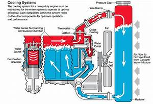 Mazda Engine Cooling Diagram