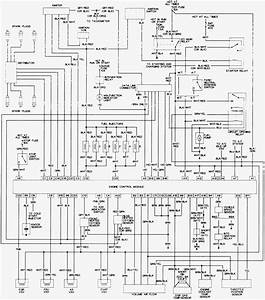 1991 Toyota Wiring Diagram