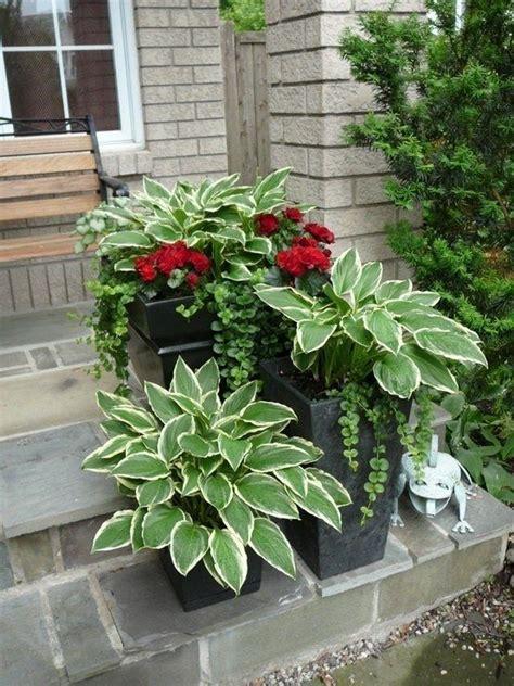 30 ไอเดียการจัดสวน กระถางดอกไม้   กระถางดอกไม้, ไอเดียแต่งสวน