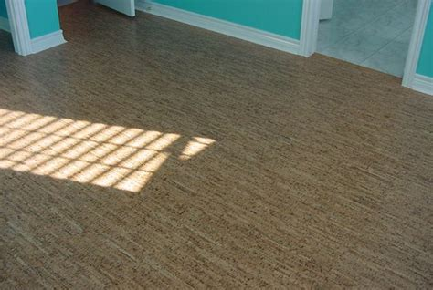 cork flooring san diego top 28 cork flooring maintenance top 28 cork flooring cleaning cork flooring cork flooring