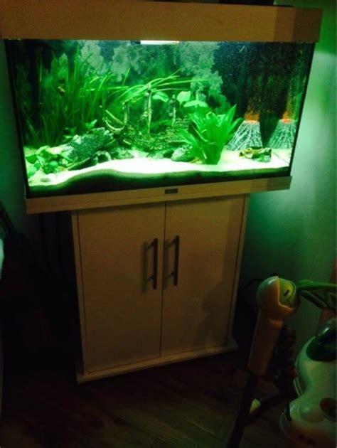 juwel 125 mit unterschrank juwel aquarium 125 liter mit unterschrank und viel zubeh 246 rteile in duisburg fische aquaristik