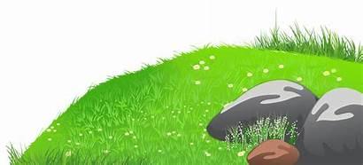 Clipart Grass Hill Clip Hills Daisies Lawn